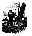 Vimar - Fables de La Fontaine - 08-10 . L'Ours et l'Amateur des jardins.jpg