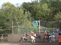 Visio del camp horseball.jpg
