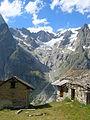 Vista dal Tour du Mont Blanc Val Ferret DSCN8817.JPG