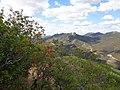 Vistas desde el Castillo de Cabañas 24.jpg
