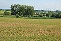Vlaamse Ardennen 29.jpg