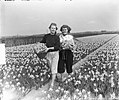 Voorjaarsplaatjes meisjes op Narcissenveld, Bestanddeelnr 905-6427.jpg