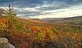 Wampler Road Vista (2) (10529960434).jpg
