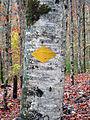 Wanderwegzeichen südlich des Klöntalersees.JPG