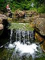 Wasser in vielen Variationen im Bad Mergentheimer Kurpark. 13.jpg