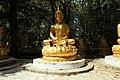 Wat Thammapathip à Moissy-Cramayel le 20 août 2017 - 25.jpg