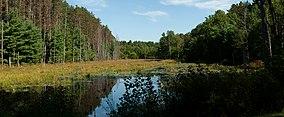 Wells State Park.jpg
