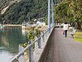 Whakatane New Zealand-7200007.jpg