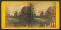 White House, South Side, by E. & H.T. Anthony (Firm) 2.png