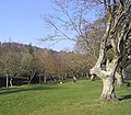 Wilton Park in Hawick - geograph.org.uk - 378503.jpg