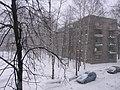 Winter 2010 - panoramio - S Petr.jpg