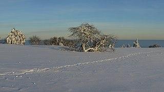 Winter in der Langen Rhön.jpg