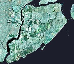 Wpdms nygis staten island small.jpg