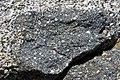 Xenolith in granodiorite (Giant Forest Granodiorite, mid-Cretaceous, 97-102 Ma; Moro Rock, Sequoia National Park, California, USA) 4 (16799577815).jpg