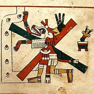 Mexican wolf - Image: Xolotl 1