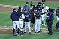 Yankees celebrate ALDS Game 5 victory 10-12-12 (12).jpeg