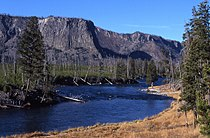 Yell madison river 16357.jpg