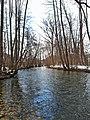 Zlotska reka zimi.jpg