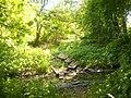 Zufluss zum Bramfelder See Sommer - panoramio.jpg