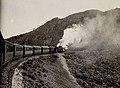 Zug bei Cavtat.jpg