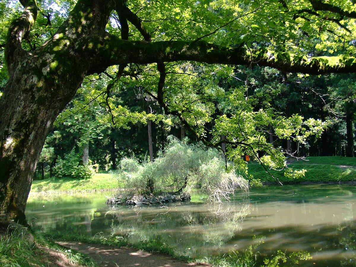 Zugdidi Botanical Garden - Wikipedia