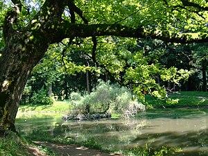Amazing Zugdidi Botanical Garden