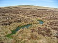 (Another) boggy bit - geograph.org.uk - 391125.jpg