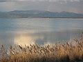 Απόλυτη γαλήνη! Λιμνοθάλασσα Βιστωνίδα!.jpg