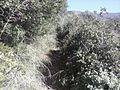 Κατηχώρι - panoramio.jpg