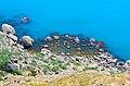 Блакитні води Чорного Моря - пiвострiв Меганом.jpg
