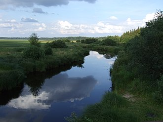 Borovichsky District - River landscape in Borovichsky District