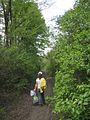 Дендрологічний парк 241.jpg