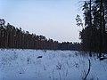 Заказник Дзвінківський -2012 рік (9).jpg