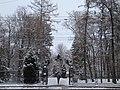 Липки ворота снег 8янв2020.jpg