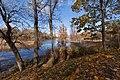 Нижний пруд в парке Ораниенбаума.jpg