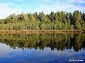 Озеро Захарничи 2 - panoramio.jpg
