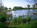 Озеро - panoramio - Matveev Michail (1).jpg