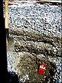 Озёрная терраска в беле Телецкое.jpg