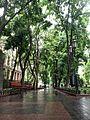 Парк Міський сад.jpg