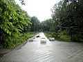 Парк им. Горького одна из аллей.jpg
