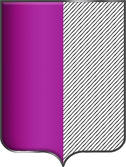 Пурпурный цвет щита.jpg