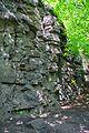 Скелі біля греблі, с. Дениші.jpg