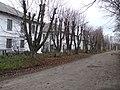 Улица в деревне Бегичево Тульской области.jpg