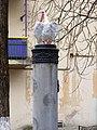 Фонтан Пеликаны во дворике на ул. Лютеранская.jpg