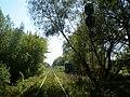 Цотны ўваходны святлафор 1Ч, раз'езд Пугачова - panoramio.jpg