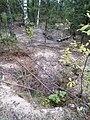 """Ямка з вимитим грунтом, що залишилася від незаконного пошуку бурштину у межах """"Поліського природного заповідника"""" 01.jpg"""