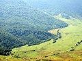 Ծաղկունյաց լեռնաշղթաների լանջեր (2).JPG