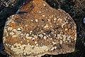 Հուշարձան Քարվաճառում (10).jpg