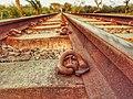 বঙ্গবন্ধু সেতুর পশ্চিম পাড়ের রেললাইন.jpg