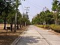 จังหวัดอุบลราชธานี UBISD rd. - panoramio.jpg